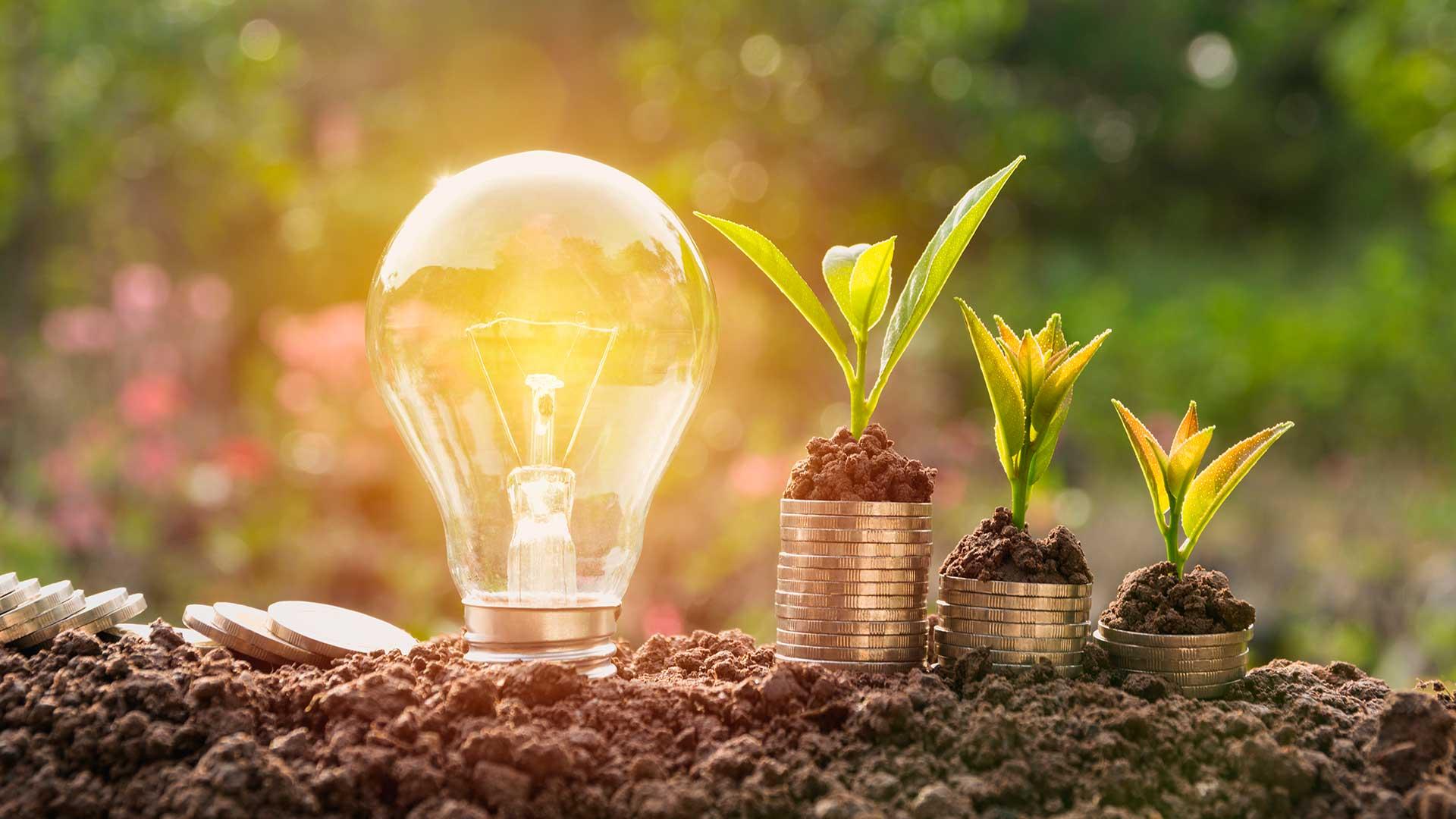 5 dicas para economizar energia e reduzir a conta de luz