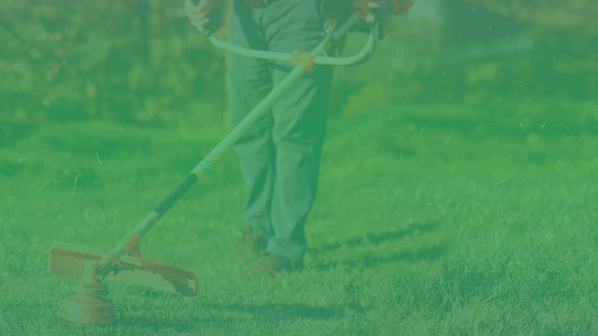 5 dicas para limpar um terreno